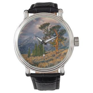 USA, Wyoming, Grand Teton NP. Sunrise greets a Watch