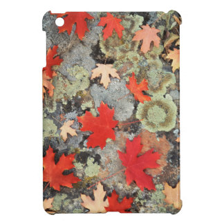 Utah, Fishlake National Forest. Patterns iPad Mini Cases