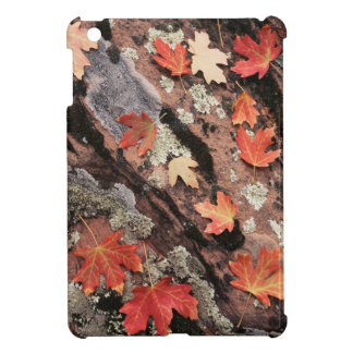 Utah, Zion National Park, Patterns of autumn iPad Mini Case