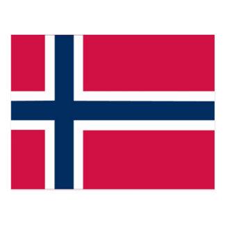 """""""V"""" for vindu Norwegian flash cards/matching cards"""