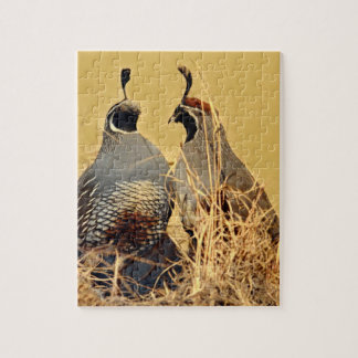 Valley Quail (California) Jigsaw Puzzle