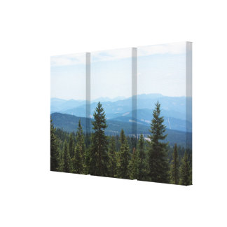 Valley View on Mt Shasta Canvas Triptych Wall Art Gallery Wrapped Canvas