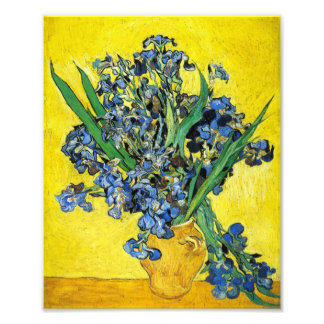 Van Gogh Irises Print Photo Print