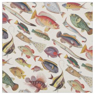 Varieties of Fish Fabric