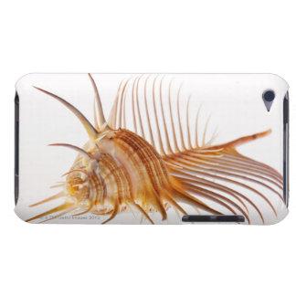 Venus Comb Murex shell (Murex pectin) against iPod Case-Mate Cases