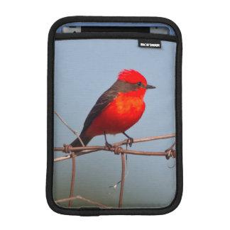 Vermilion Flycatcher (Pyrocephalus Rubinus) iPad Mini Sleeve