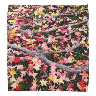 Very Colorful Maple Leaves Bandana