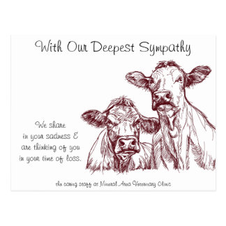 Veterinarian Sympathy Card Cows Cattle Postcard