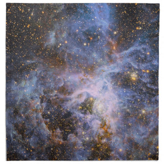 VFTS 682 in the Large Magellanic Cloud Napkin