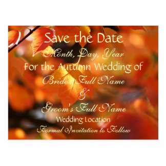 Vibrant Autumn Save the Date Wedding Postcard