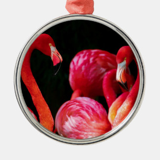 Vibrant Pink Flamingos and Black Background Christmas Ornament