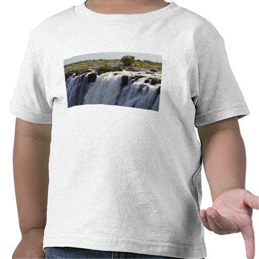 Victoria Falls, Zambesi River, Zambia. 2 T-shirts