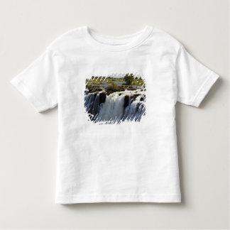 Victoria Falls, Zambesi River, Zambia. 2 T Shirts