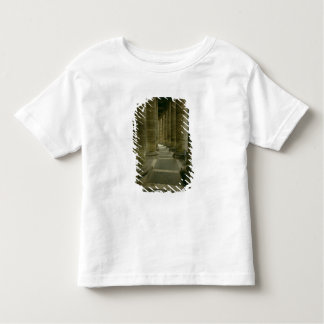 View inside the colonnade toddler T-Shirt
