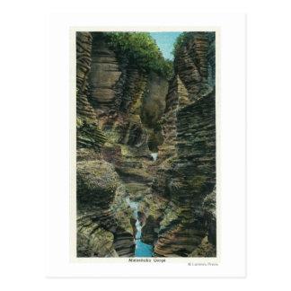 View of Minnehaha Gorge Postcard
