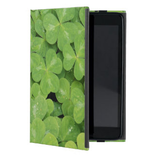 View of Oxalis Oregana wood Sorrel Foliage iPad Mini Case