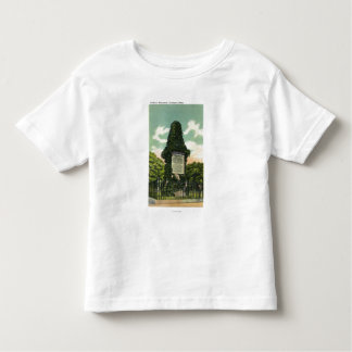 View of Soldiers' Monument Toddler T-Shirt