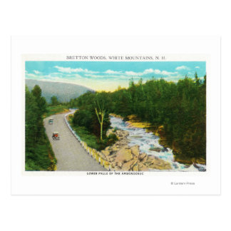View of the Ammonoosuc Lower Falls Postcard