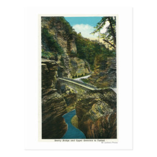 View of the Sentry Bridge & Upper Tunnel Postcard