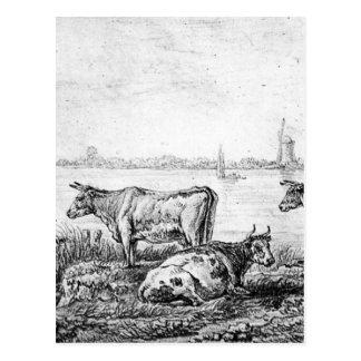 View on Dordrecht by Abraham van Strij Postcard