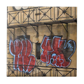 Viewed From the High Line: Graffiti on a Building Small Square Tile