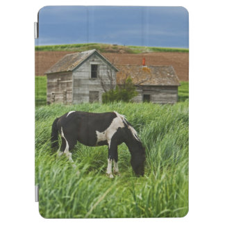 Viewing horses in a field in the Palouse 2 iPad Air Cover