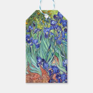 Vincent van Gogh 1889 Irises