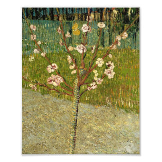 Vincent Van Gogh Almond Tree In Blossom Vintage Photographic Print