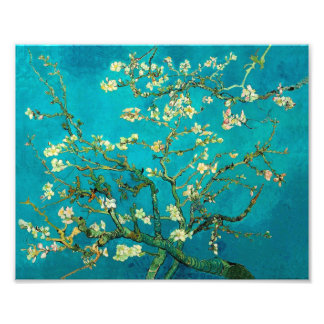 Vincent Van Gogh Blossoming Almond Tree Floral Art Photograph