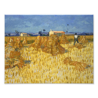 Vincent van Gogh - Corn Harvest in Provence Photographic Print
