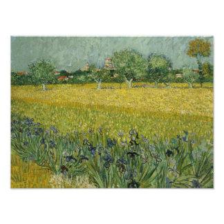 Vincent van Gogh - Field with Flowers Near Arles Photo Art