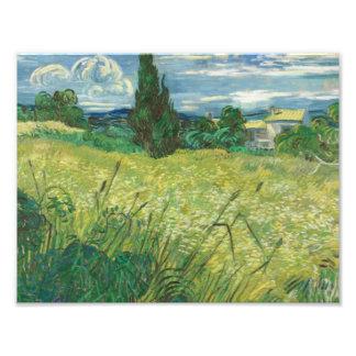 Vincent van Gogh - Green Field Photographic Print