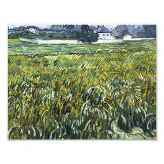 Vincent van Gogh - House at Auvers Photograph