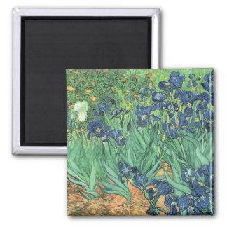 Vincent van Gogh | Irises, 1889 Magnet