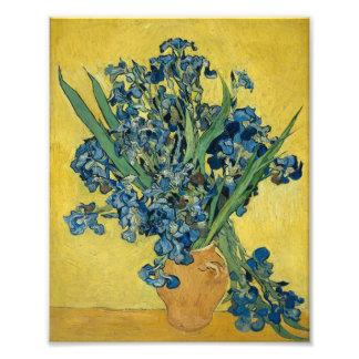 Vincent Van Gogh Irises In A Vase Vintage Art 1890 Photographic Print