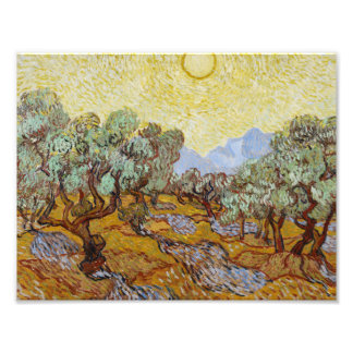 Vincent van Gogh - Olive Trees Photographic Print