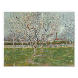 Vincent van Gogh - Orchard in Blossom Art Photo