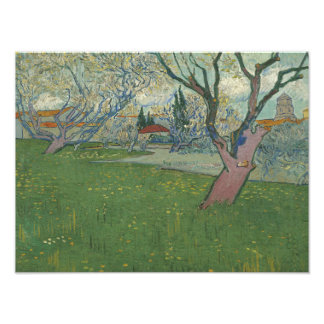 Vincent van Gogh - Orchards in Blossom Photographic Print