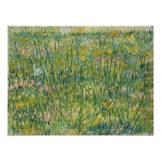 Vincent van Gogh - Patch of grass Photo Print