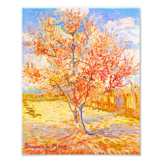 Vincent Van Gogh Peach Tree in Blossom Vintage Art Art Photo