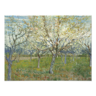 Vincent van Gogh - The Pink Orchard Photographic Print