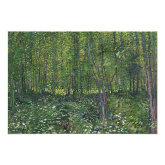 Vincent van Gogh - Trees and Undergrowth Photograph
