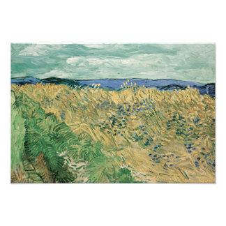 Vincent van Gogh - Wheatfield With Cornflowers Photo Art