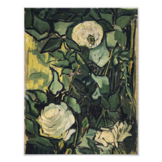 Vincent Van Gogh White Roses Rose Vintage Art Photo Print