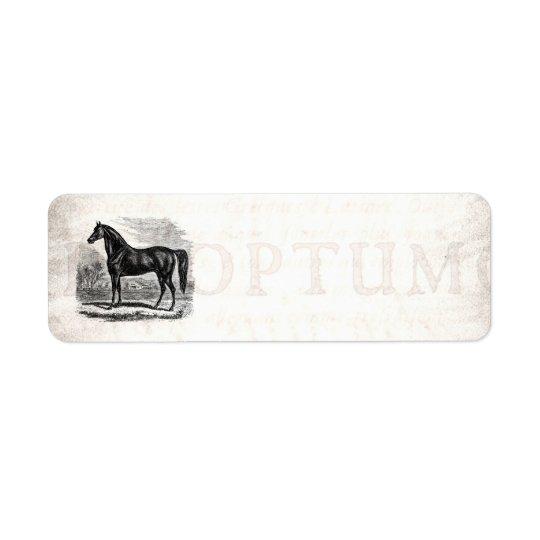 Vintage 1800s Horse - Morgan Equestrian Template Return Address Label