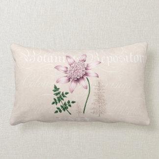 Vintage 1800s Pink Dahlia Flower Dahlias Floral Lumbar Pillow