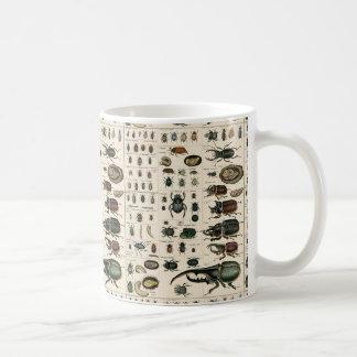 Vintage Beetle Illustration Basic White Mug