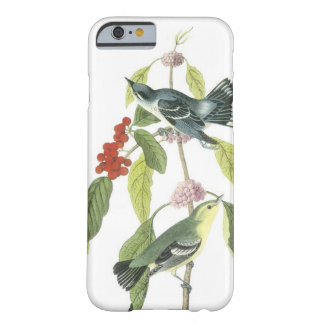 Vintage birds on a branch...i phone 5 case barely there iPhone 6 case