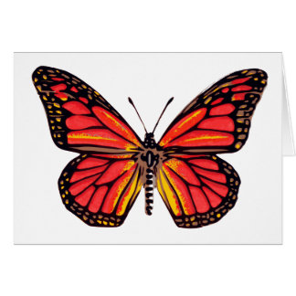 Vintage Butterfly Print Note Card