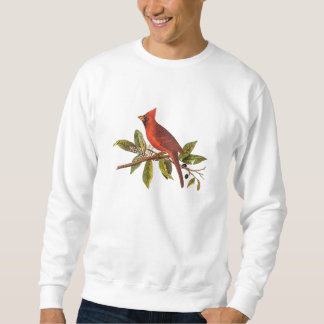 Vintage Cardinal Song Bird Illustration - 1800's Sweatshirt